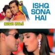 Ishq Sona HaiSalman Khan & Sushmita SenShankar Mahadevan & HemaBiwi No 190's Hindi Songs
