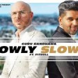 SLOWLY SLOWLY Guru Randhawa ft. Pitbull Bhushan Kumar DJ Shadow, Blackout, Vee, DJ MoneyWi
