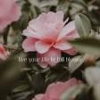 Meghan Trainor - Thank you in advance (NO) (Lyrics)