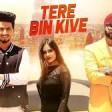 Main Tere Bin Kiwe Rawangi - Jannat Zubair - Mr Faisu - Tiktok Star Songs