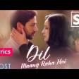 Dil maang raha hai Ghost Yasser Desai & Sanjeev darshan lyrics video (1)
