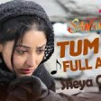 Tum bin jiya jaaye kaise with lyrics - sanam re